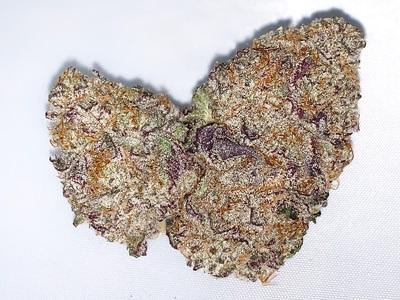 Purple Snow (I) image